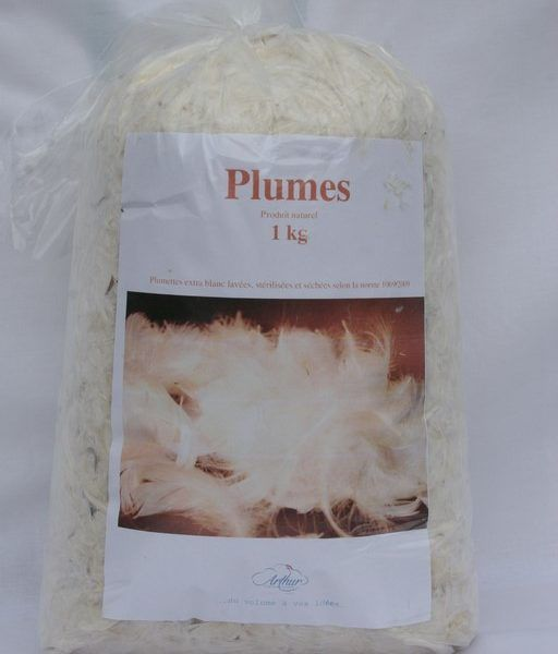 Plumes extra blanc